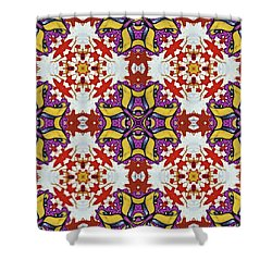 Graffito Kaleidoscope 40 Shower Curtain