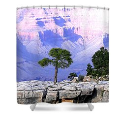 Grand Canyon 73 Shower Curtain by Will Borden