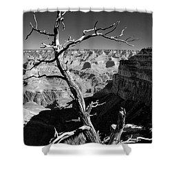 Grand Canyon Bw Shower Curtain