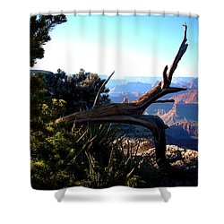 Grand Canyon Dead Tree Shower Curtain by Matt Harang