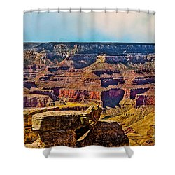 Grand Canyon Mather Viewpoint Shower Curtain by Bob and Nadine Johnston
