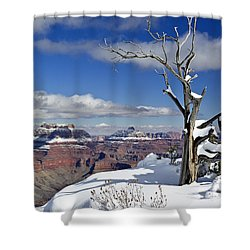 Grand Canyon Winter -2 Shower Curtain