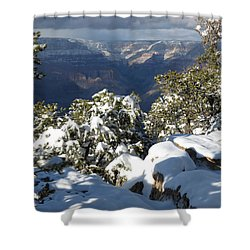 Grand Shower Curtain