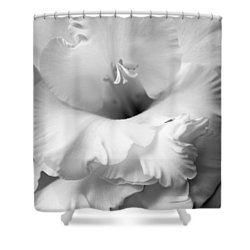 Grandiose Gladiola Flower Monochrome  Shower Curtain by Jennie Marie Schell