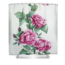 Shower Curtain featuring the painting Grandma Helen's Roses by Katherine Young-Beck