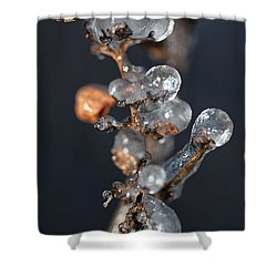 Grape Ice Shower Curtain