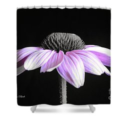 Grape Mist Shower Curtain