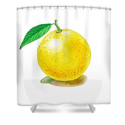 Shower Curtain featuring the painting Grapefruit by Irina Sztukowski