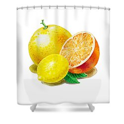 Shower Curtain featuring the painting Grapefruit Lemon Orange by Irina Sztukowski