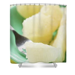 Grapefruit Segments On Plate And Fork Shower Curtain