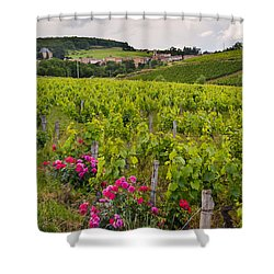 Grapes And Roses Shower Curtain by Allen Sheffield