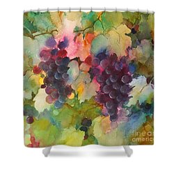 Grapes In Light Shower Curtain
