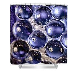 Grapes Of Glass Shower Curtain by Omaste Witkowski