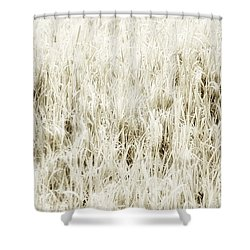 Grass Abstract Shower Curtain by Elena Elisseeva