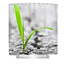 Grass In Asphalt Shower Curtain