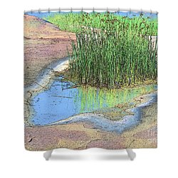 Grass Growing On Rocks Shower Curtain by Teresa Zieba