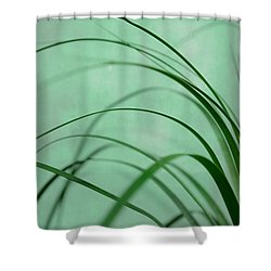 Grass Impression Shower Curtain by Hannes Cmarits