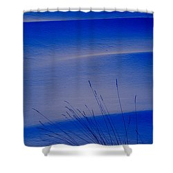 Grasses And Twilight Snow Drifts Shower Curtain by Irwin Barrett