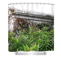 Shower Curtain featuring the photograph Grave by Beth Vincent