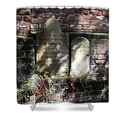 Grave Stones With Fern Shower Curtain by Patricia Greer