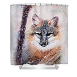 Gray Fox Shower Curtain