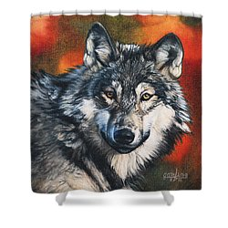 Shower Curtain featuring the painting Gray Wolf by Joshua Martin