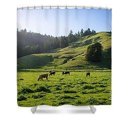 Grazing Hillside Shower Curtain by CML Brown