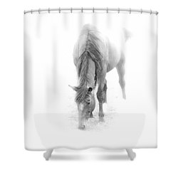 Grazing Shower Curtain by John Stuart Webbstock