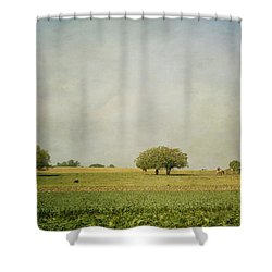 Grazing Shower Curtain by Kim Hojnacki