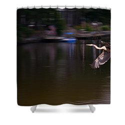 Great Blue Heron In Flight Shower Curtain