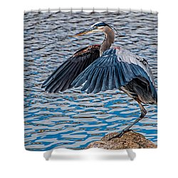 Great Blue Heron Pose Shower Curtain