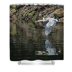 Great Blue Heron Reflections Shower Curtain