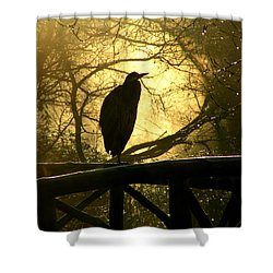 Great Blue Heron Silhouette Shower Curtain