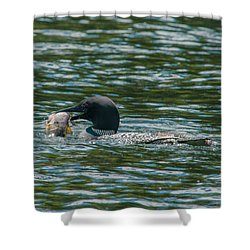 Shower Curtain featuring the photograph Great Catch by Brenda Jacobs