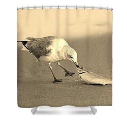 Shower Curtain featuring the photograph Great Catch With Fish by Cynthia Guinn
