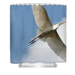 Great Egret Overhead Shower Curtain by Carol Groenen