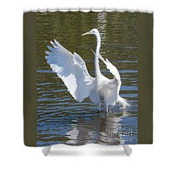 Great Egret Symphony Shower Curtain by Carol Groenen