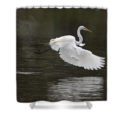 Great Egret Takeoff Shower Curtain by Gary Langley