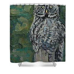 Great Gray Shower Curtain by Phil Chadwick