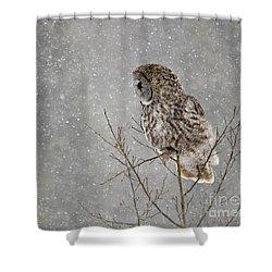 Great Grey Hunter Shower Curtain