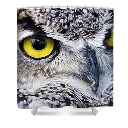 Great Horned Closeup Shower Curtain by Dee Cresswell