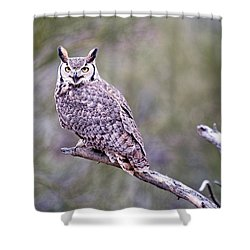 Shower Curtain featuring the photograph Great Horned Owl by Dan McManus