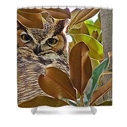 Shower Curtain featuring the photograph Great Horned Owl by Meghan at FireBonnet Art