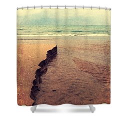 Great Lakes Great Times Shower Curtain by Michelle Calkins