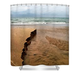 Great Lakes Shoreline Shower Curtain