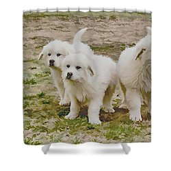 Great Pyranese Puppies Shower Curtain by Bonnie Willis