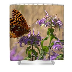 Great Spangled On Bee Balm Shower Curtain by Shelly Gunderson