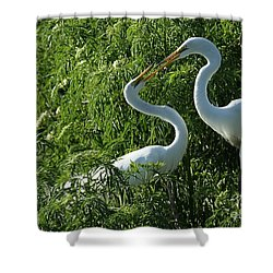 Great White Egret Lovers Shower Curtain by Sabrina L Ryan
