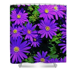 Grecian Wildflowers 2 Shower Curtain by John Wartman