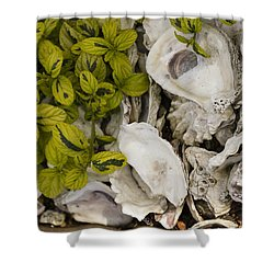 Green Abalone Shower Curtain